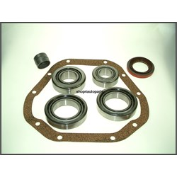 differential overhaul kit for salisbury axle