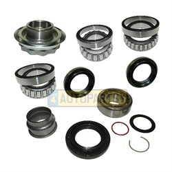 DOK016: DIFF OVERHAUL KIT FULL FRONT L405 L462 L494